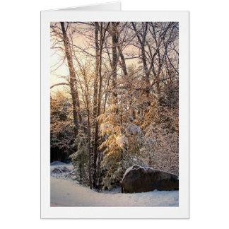 Illuminated Winter Greeting Cards