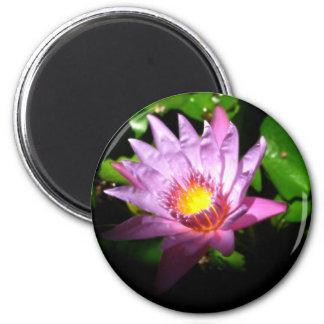 Illuminating Lotus 2 Inch Round Magnet
