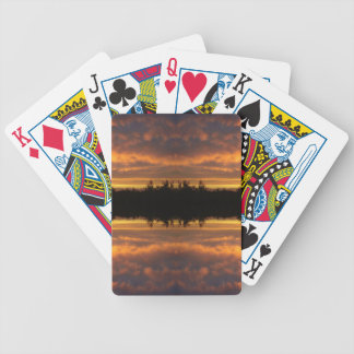 Illusion of Reflection Bicycle Playing Cards