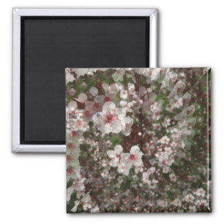 Illusion of the Sandcherry 2 Inch Square Magnet