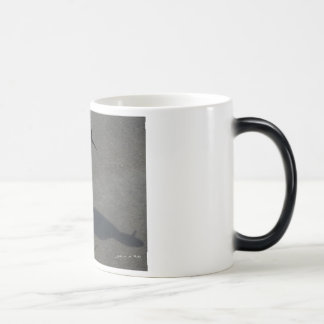 Illusions Magic Mug