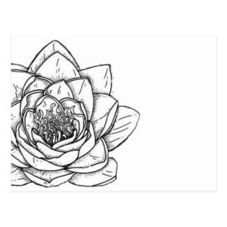 Illustrated Flower Modern Postcard