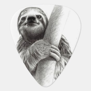 Illustrated Sloth Guitar Pick by paul68 at Zazzle