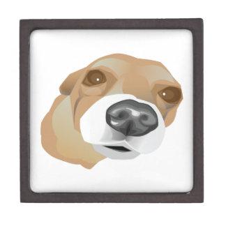 Illustrated vector portrait of a little dog keepsake box