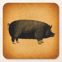 Illustrated Vintage Pig Rustic Art Square Paper Coaster