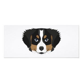 Illustration Bernese Mountain Dog Card