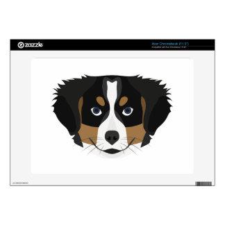 Illustration Bernese Mountain Dog Skins For Acer Chromebook