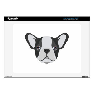 Illustration cute French Bulldog Acer Chromebook Decals