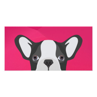 Illustration French Bulldog with pink background Card