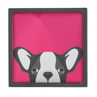 Illustration French Bulldog with pink background Gift Box