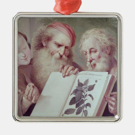Illustration from Hortus Cliffortianus Metal Ornament