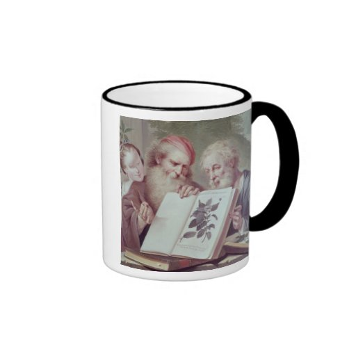 Illustration from Hortus Cliffortianus Ringer Mug