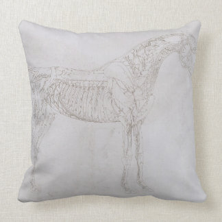 Illustration from 'The Anatomy of the Horse, inclu Pillows
