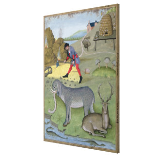 Illustration from the 'Book of Simple Gallery Wrapped Canvas