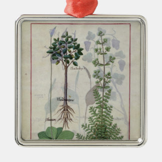Illustration from the 'Book of Simple Medicines' 2 Metal Ornament