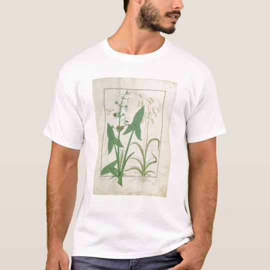 Illustration from the 'Book of Simple Medicines' 2 T-Shirt