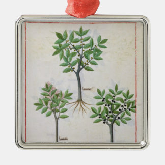 Illustration from the 'Book of Simple Medicines' Metal Ornament