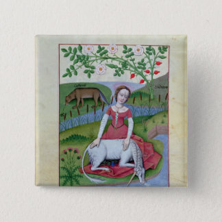 Illustration from the 'Book of Simple Medicines' Pinback Button