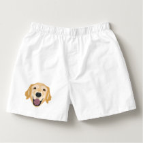 Illustration Golden Retriever Boxers