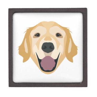 Illustration Golden Retriever Gift Box