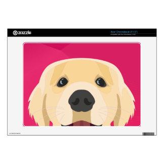 Illustration Golden Retriver with pink background Skins For Acer Chromebook
