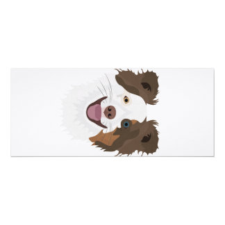 Illustration happy dogs face Border Collie Card