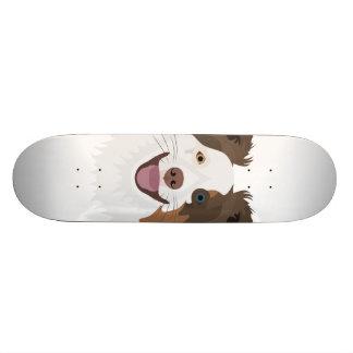 Illustration happy dogs face Border Collie Skateboard