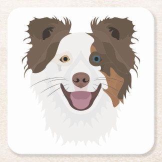 Illustration happy dogs face Border Collie Square Paper Coaster