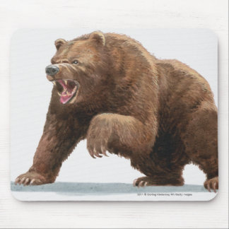 Illustration of a Brown bear Mouse Pad
