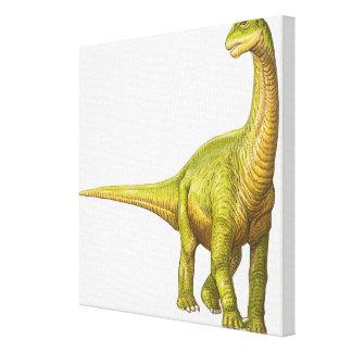 Illustration of a Camarasaurus Canvas Print