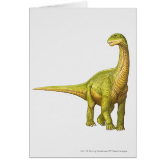 Illustration of a Camarasaurus Card