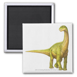 Illustration of a Camarasaurus Magnet