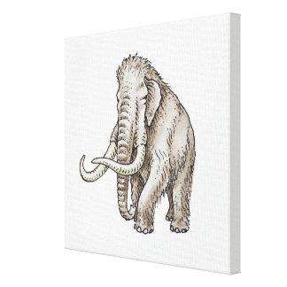 Illustration of a mammoth canvas print