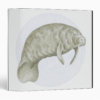 Illustration of a Manatee (Trichechus sp.) Binder