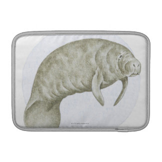 Illustration of a Manatee (Trichechus sp.) MacBook Sleeves