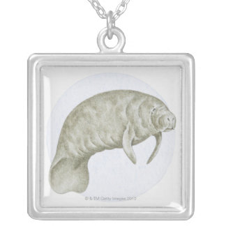 Illustration of a Manatee (Trichechus sp.) Square Pendant Necklace