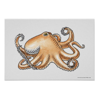 Illustration of an octopus poster
