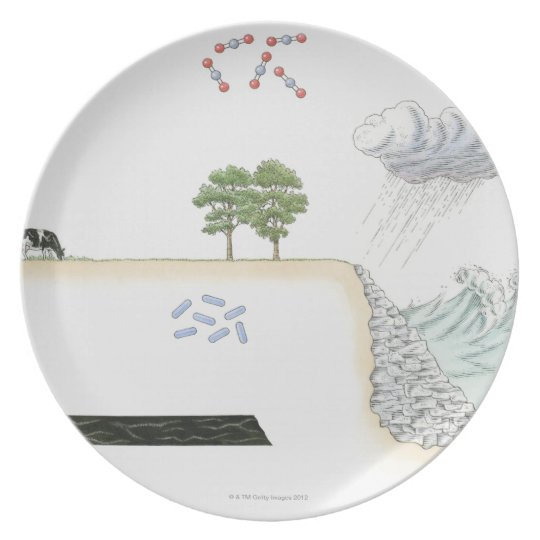 Illustration of carbon cycle on Earth Dinner Plate