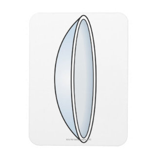 Illustration of Contact Lens Magnet
