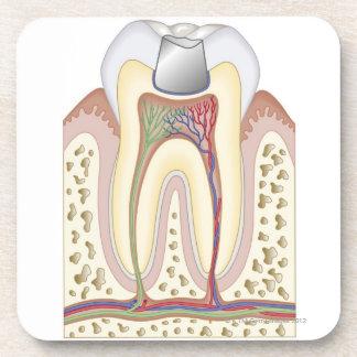 Illustration of Dental Filling Coaster