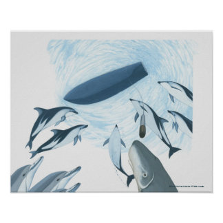 Illustration of dolphins looking up at a boat poster