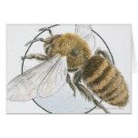 Illustration of European Honey Bee Cards