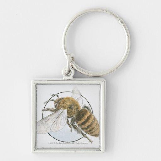Illustration of European Honey Bee Key Chain
