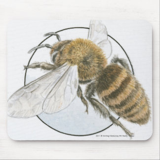 Illustration of European Honey Bee Mouse Pad