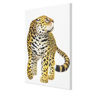 Illustration of Jaguar with head in profile Canvas Print