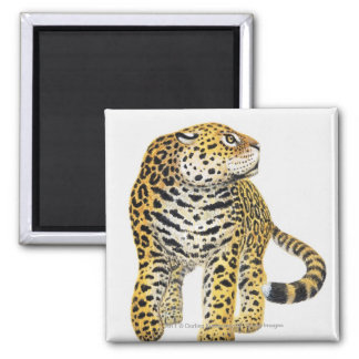 Illustration of Jaguar with head in profile Magnet