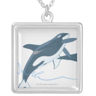 Illustration of Killer Whales (Orcinus orca) Custom Necklace