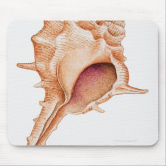 Illustration of Murex shell Mouse Pad