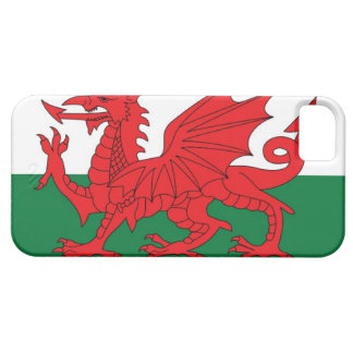 Illustration of national flag of Wales, with red iPhone SE/5/5s Case