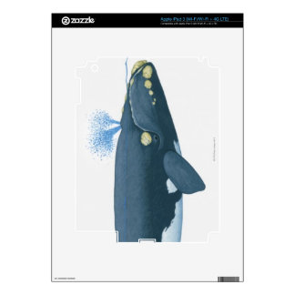 Illustration of North Pacific Right Whale iPad 3 Skin